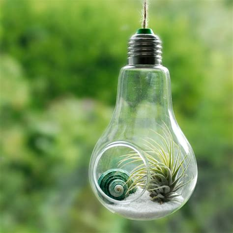 light bulbs good for plants light plant www pixshark com images galleries