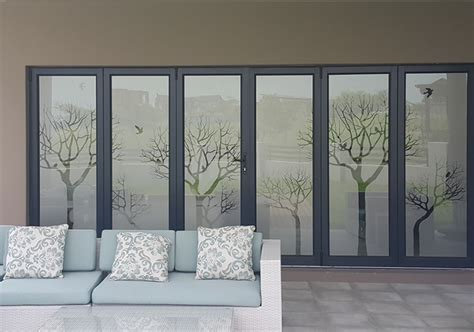 Window Decals Cape Town by Window Vinyl Frosted Window Film South Africa Window Art
