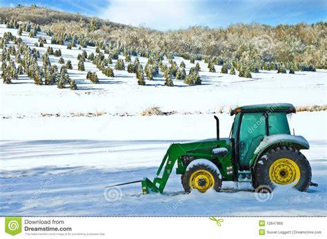 bauers weihnachtsbaum weihnachtsbaum bauernhof und traktor redaktionelles foto bild schnitt tanne 12847866