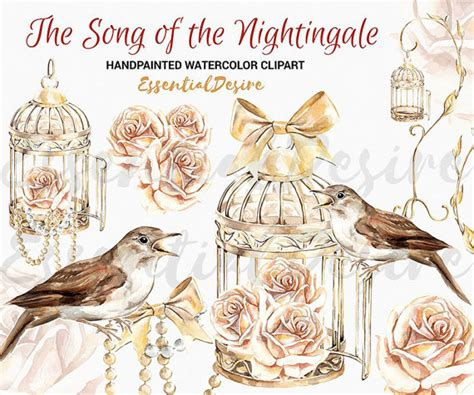 theme of rose and nightingale bird cage clipart watercolor nightingale illustration