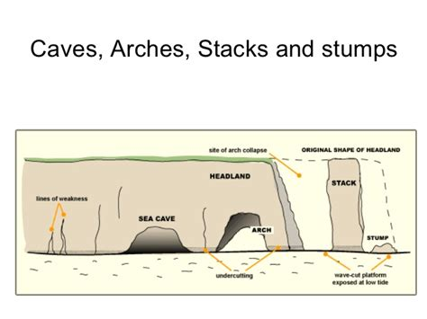 caves arches stacks and stumps diagram coastlines threat