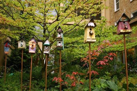 cassette per uccelli casette per uccelli fai da te casette da giardino
