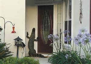 Alligator At Front Door This Is Why Floridians Always Check The Pool Before Jumping In Huffpost