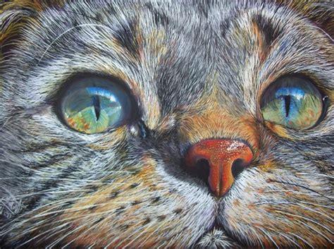 Superb Best Fine Art Photography Websites #1: 14-cat-color-pencil-drawing.preview.jpg
