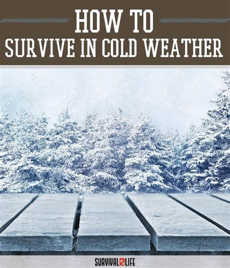 Philosophy Winter Weather Survival Kit 2 by Best 20 Cold Weather Gear Ideas On Cold