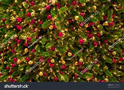 christmas texture of christmas trees and christmas