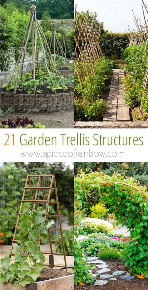 21 easy diy trellis vertical garden structures a