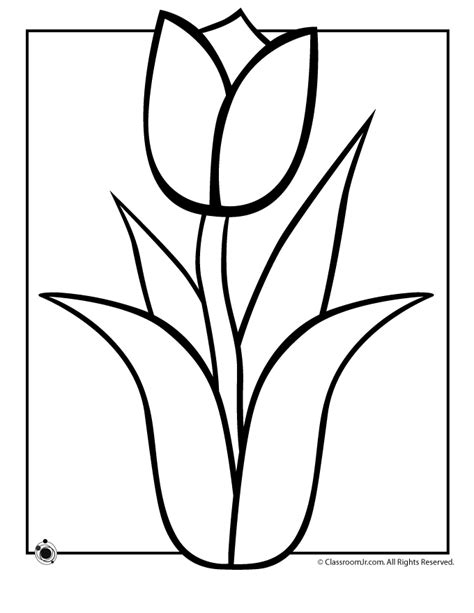 tulip leaf coloring page flower tulip stem leaves coloring pages pinterest