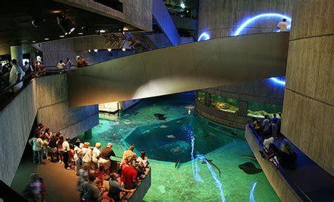 home design stores baltimore national aquarium philip chasen antiques