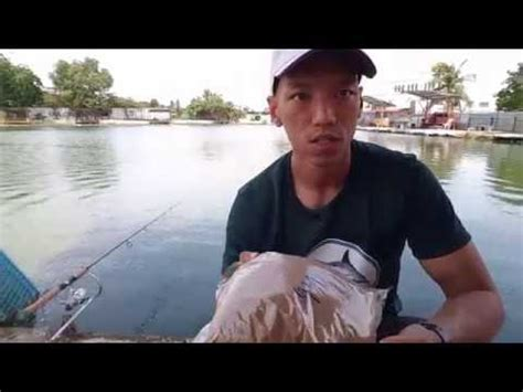 Umpan Pelet Apung cara umpan rohu fishing method 盧鱼钓法 by greenbait doovi