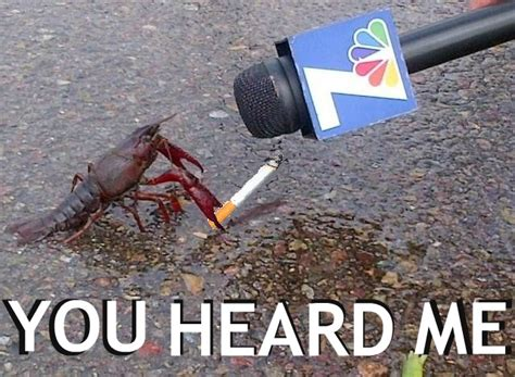 Crab Meme - you heard me crabs smoking cigarettes know your meme