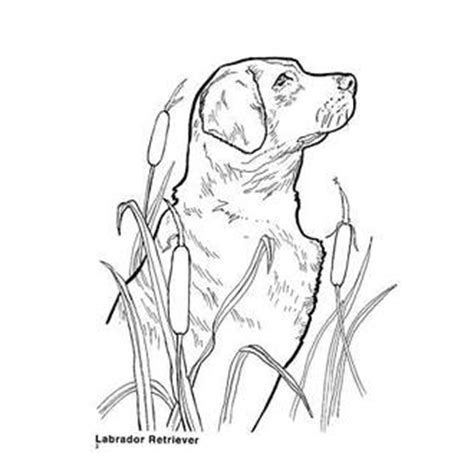 coloring pages of hunting dogs stunning duck hunting coloring pages with and dog