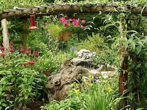 Plants In House Photograph Of A Hummingbird Garden