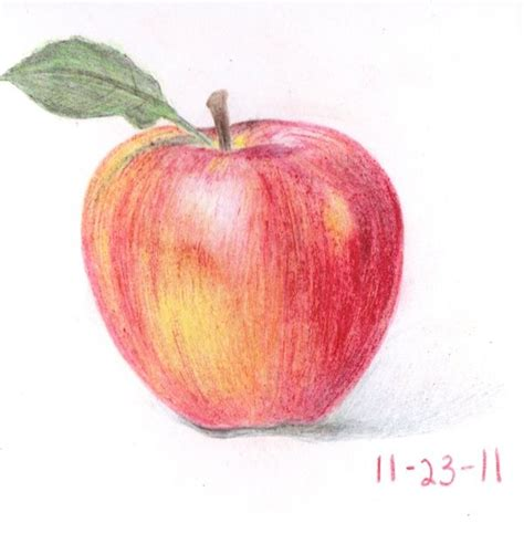 pictures 0f vegetables 17 best images about crayon drawings on lost