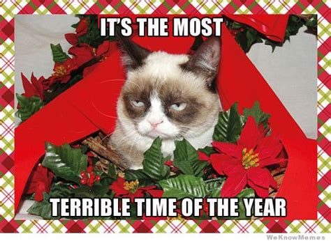 Christmas Card Meme - grumpy cat meme christmas