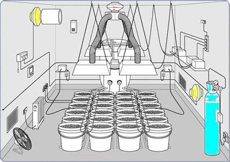 grow room setup 6 x 8 hydroponic growroom setup