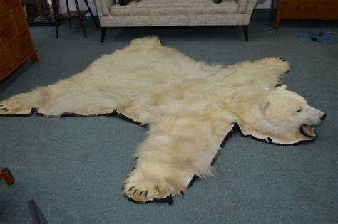 polarbear rug mounted polar rug including claws 90 quot to nose