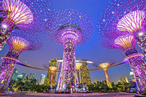 singapore trees of light three great light shows in singapore evening sound and