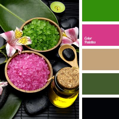 spa color color of the stones for spa color palette ideas