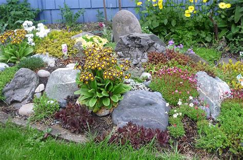 small rock garden design rock garden design ideas small rocks for landscaping