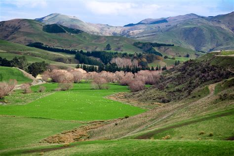 file new zealand rural landscape 9758 jpg wikimedia