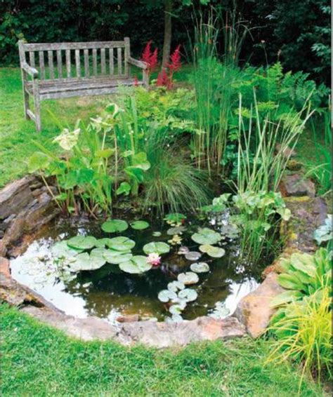 how to make a koi pond in your backyard ponds backyards and make your own on pinterest
