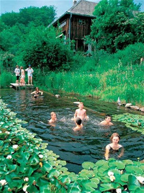 natural swimming pool natural swimming pools on pinterest natural pools
