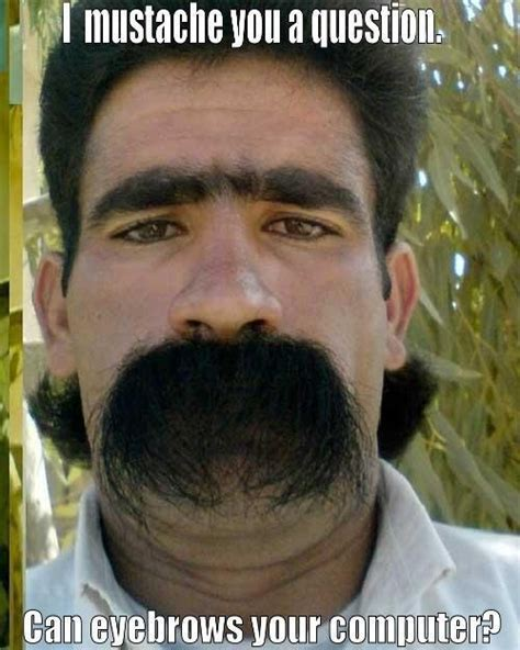 17 best images about i moustache you a question on