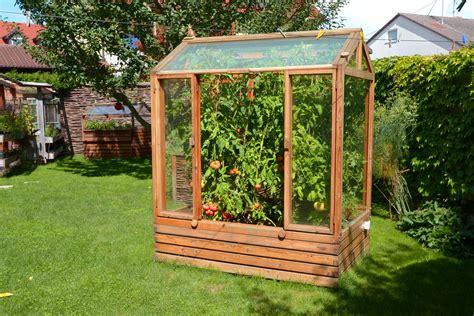 tomaten haus tomatenhaus das besondere gew 228 chshaus gartenfrosch