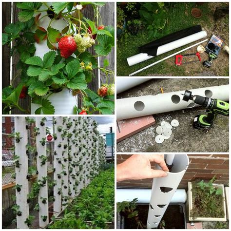 make your own hanging planter wonderful diy vertical pvc planter pvc pipe strawberry
