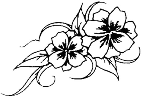 tattoo flower templates 1000 images about tats on pinterest butterfly tattoos