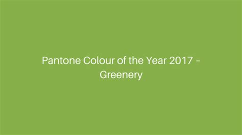 pantone of the year pantone colour of the year 2017 only oilcloth