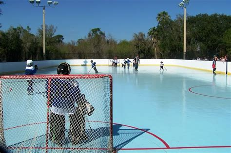 Backyard Roller Hockey Rink by Lake Park Rink Inline Hockey Rinks On Waymarking