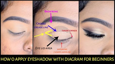 how to apply eyeshadow diagram how to apply eyeshadow basic to pro for beginner with