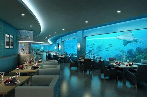 aquarium design mumbai http 4 bp blogspot com gwvglgm8f04 td5opinhlxi