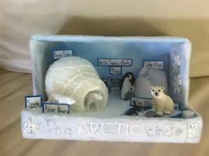 K 3d Polar Kid the arctic circle school project 1st grade school biomes and homework