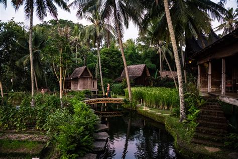 Bambu Rejeki Pagoda 3 Tingkat sleep with the fishes in bali s bambu indah hotel