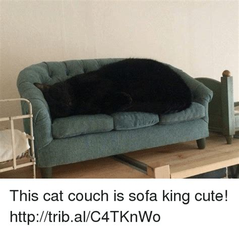 sofa king happy 25 best memes about sofa king sofa king memes