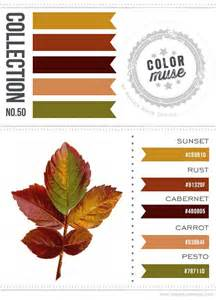 what color goes with rust color muse collection no 50 color scheme color palette