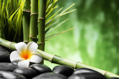 imagenes relajantes zen im 225 genes relajantes zen debuda net