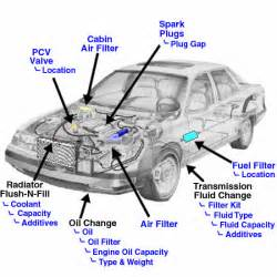 where is the fuel filter located on my mx 5 its not