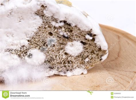 bad bread royalty free stock photo image 32283525