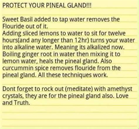 Pineal Gland Detox Foods by Detox Pineal Gland Naturally Witchy Magical