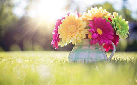 free wallpaper of spring spring wallpapers wallpaper cave