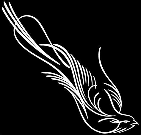 Auto Decals Pinstriping by Vinyl Pinstripe Pinstriping Decal Sticker Graphic Birds