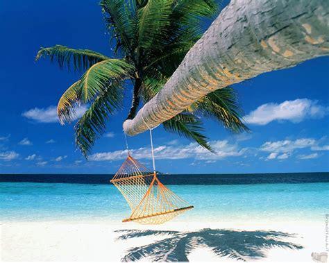 amaca sul mare offerte speciali hotel celle ligure albisola albergo sul