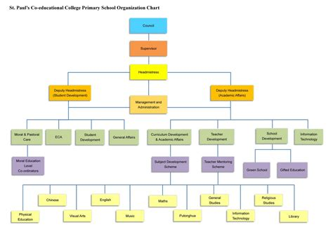 staff organogram template organogram chart related keywords organogram chart