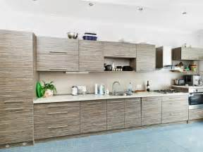 kitchen cabinet options for storage and display kitchen - Contemporary Kitchen Cabinet Doors