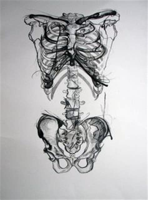 askfm skeletale anatomical computer wallpaper google search anatomy