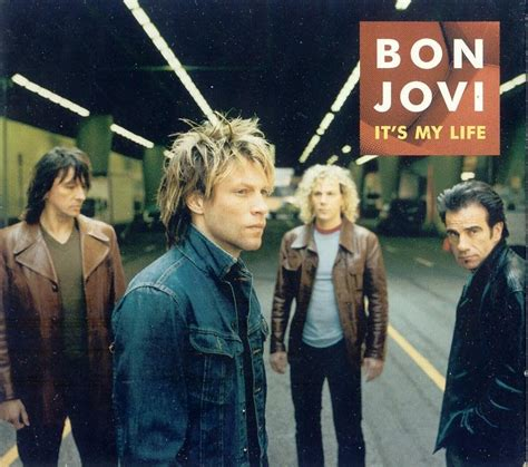 what is the song bon jovi does in direct tv commercial bon jovi it s my life dj savin remix youtube